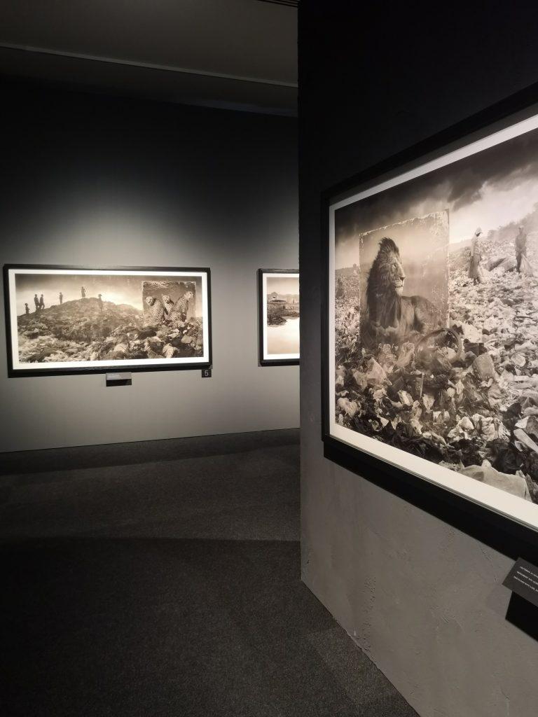 Inherit the Dust -näyttely Kansallismuseossa.