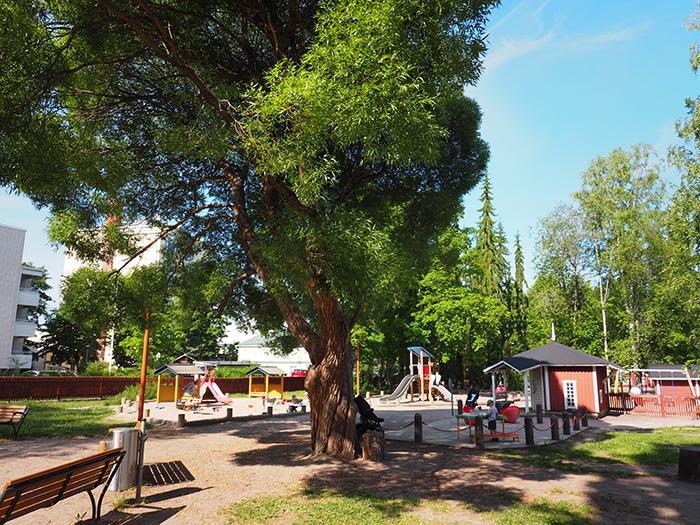 Mäki-Matin perhepuisto
